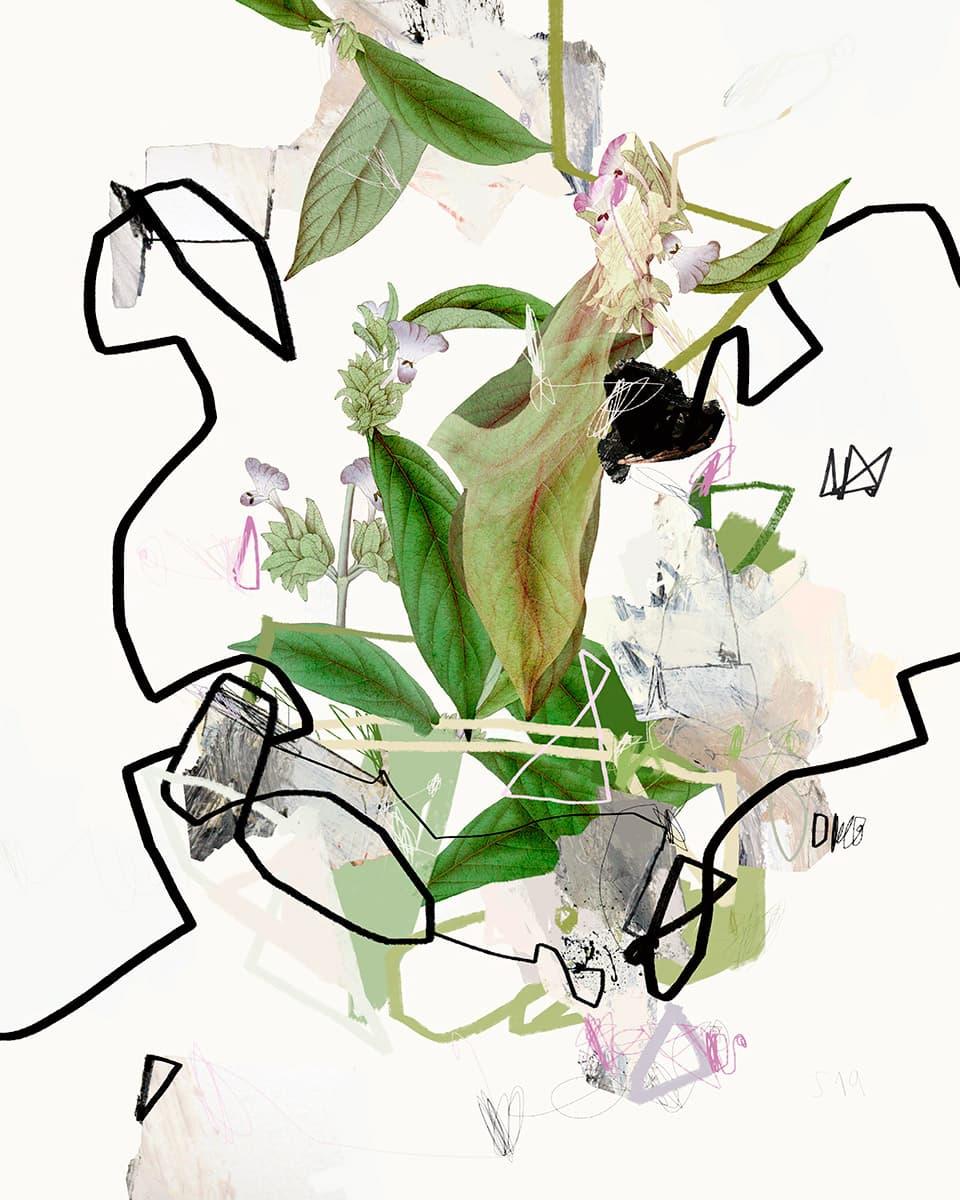 Garden Delight (2020) Sander Steins
